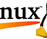 Linux-uno-de-los-grandes-inventos-modernos-del-S.XXI_.-Foto-dongee